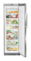 Liebherr GNes 2866 Fridge Photo